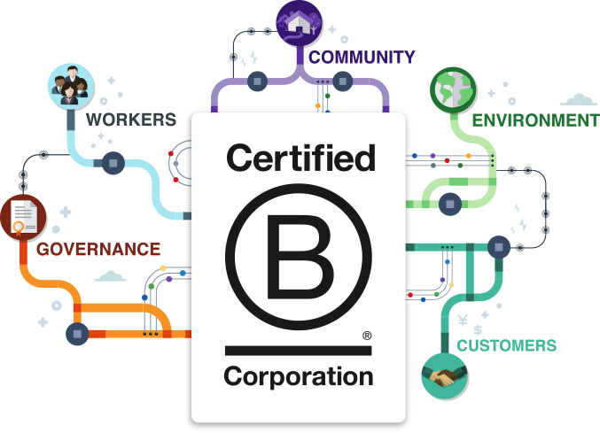 The Read - We're a B Corp! Cheers to a Sustainable Milestone - The Magazine - Poppy Barley