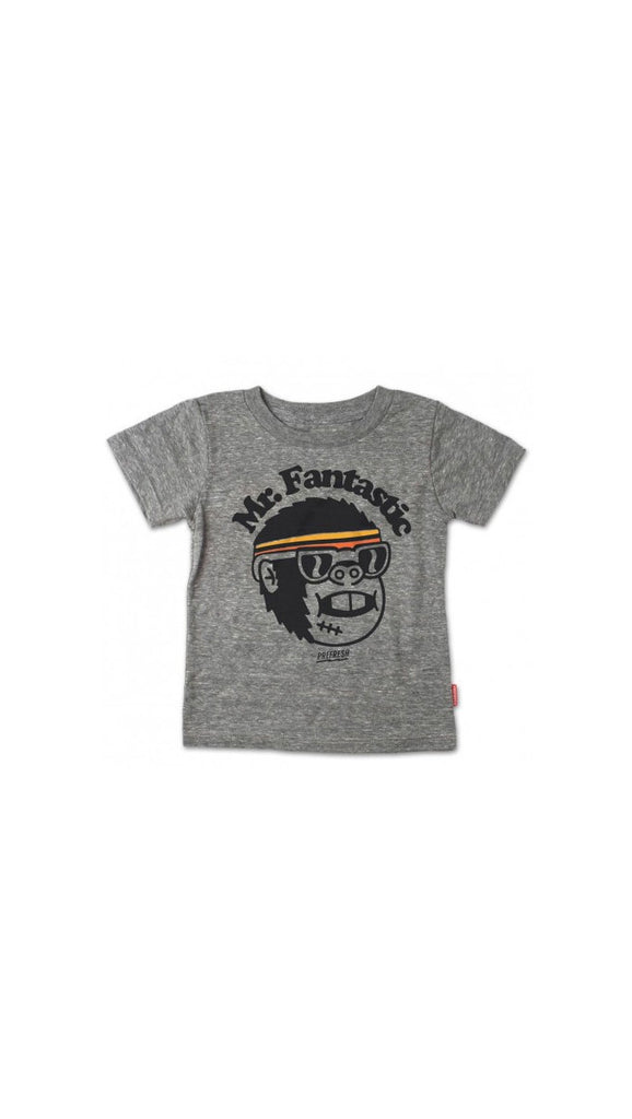 Prefresh Mr. Fantastic Tee - grey