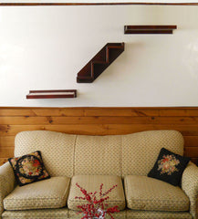 Wall Climbing Stairs & Shelves