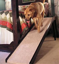"Photo of Tall Platform Dog Ramp, 16"" wide"