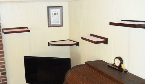 View of standard and corner cat shelves, installed on a wall.