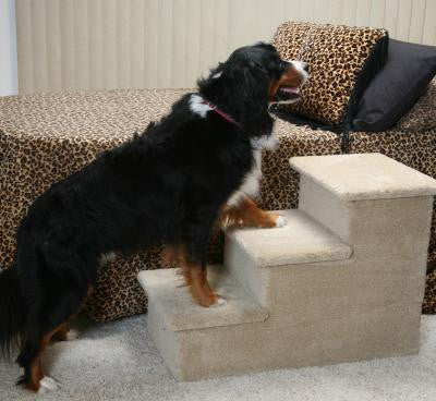 Photo of Big Triple Pet Step
