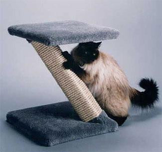 Photo of 'Z' Scratcher