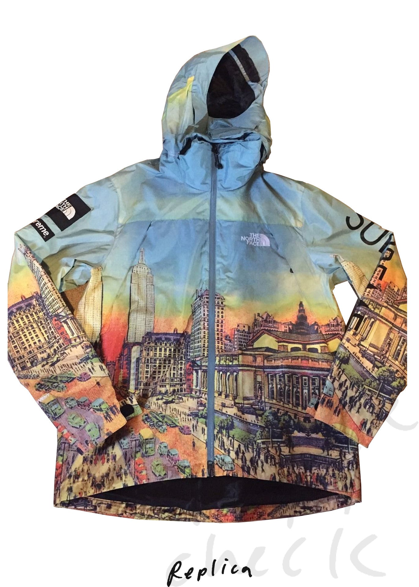 Supreme x North Face Summit Series Skyline Jacket (Day)