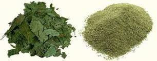 Buy Pure Neem Powder 100gms online for USD 7.85 at alldesineeds