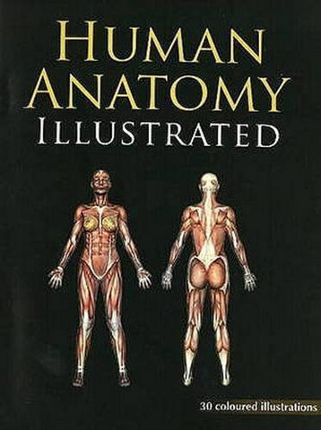 Buy Human Anatomy Illustrated: 30 Coloured Illustrations With Marking. [Paperback online for USD 7.86 at alldesineeds