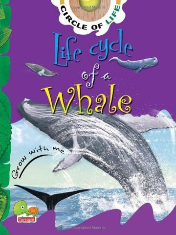 Buy Life Cycle of a Whale: Key stage 1 [Jan 01, 2011] Conolly, Cathryn online for USD 12.63 at alldesineeds