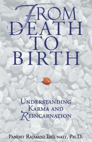 Buy From Death to Birth: Understanding Karma and Reincarnation [Paperback] [Feb online for USD 18.31 at alldesineeds