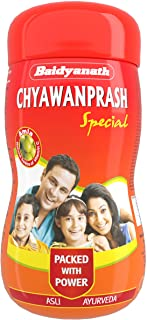 2 x Baidyanath Chyawanprash Special - All Round Immunity and Protection - 500g