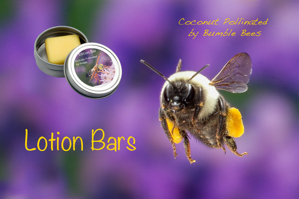 Bee Bar - Arthropod Apothecary