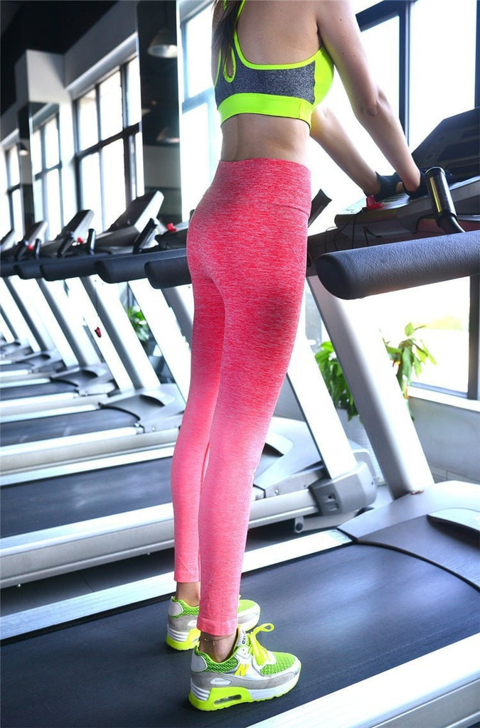 New High Waist Gym Leggings - Quick Dry High Waist Yoga /Gym /Fitness - Slimming Pants - FitShopPro
