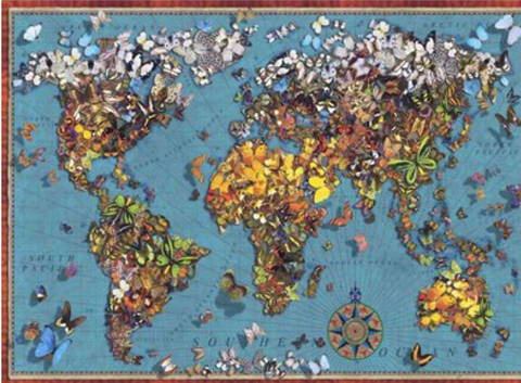 1000 - Butterfly World Map