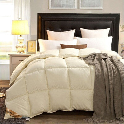 Comforter Collection - VarietyOne