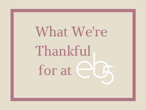 What We're Thankful for at eb5