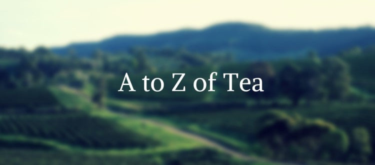 Tea terminology - the language of tea tasting
