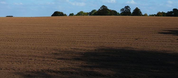 field-agriculture-soil-large