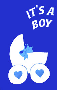 It's A Boy! Applique House Flag
