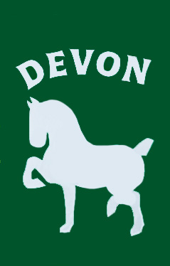 Devon Horse Show Flag on Forest