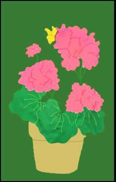 Geraniums in Pot Flag on Forest with Pink