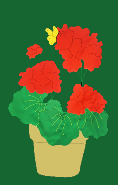 Geraniums in Pot Flag on Forest with Red