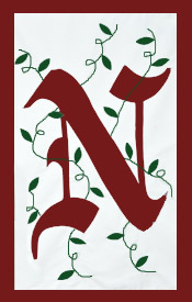 Initial Monogram 'N' Applique House Flag