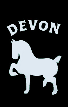 Devon Horse Show Applique Flag on Black