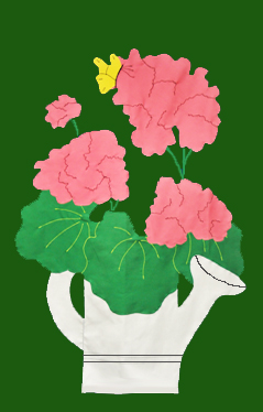 Geraniums in Watering Can Flag on Forest with Pink