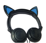 Cat Ears Earphones