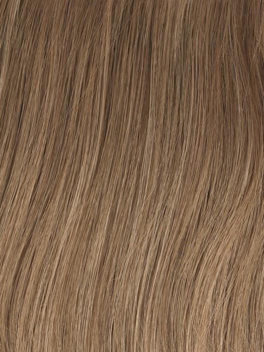 Color GL12-14 = Mocha: Dark Blonde with Medium Blonde highlights