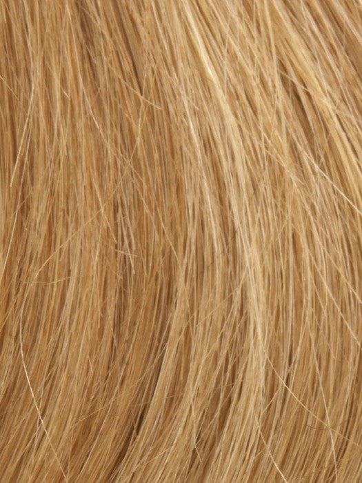 Color Sun-Kissed-Blonde = Light Brown Blended w. Light Red & Blond Tones
