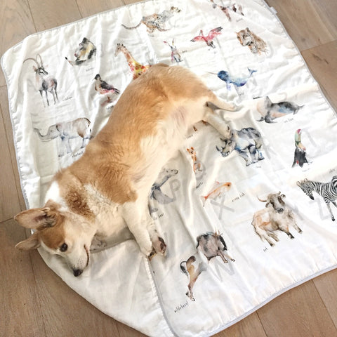 alphabet animal blanket with original watercolor art