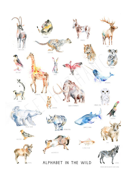 Alphabet in the Wild Art Poster - A to Z Animal Names