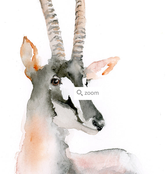 Audacious Antelope Watercolor Art Print - Alphabet in the Wild