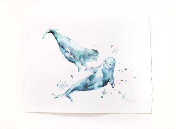 beluga whale watercolor art
