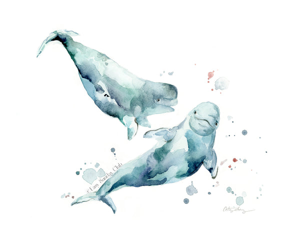 beluga whale watercolor art print for nursery and ocean themed wall decor