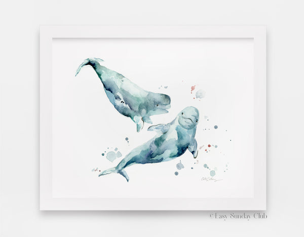 beluga whale watercolor art print