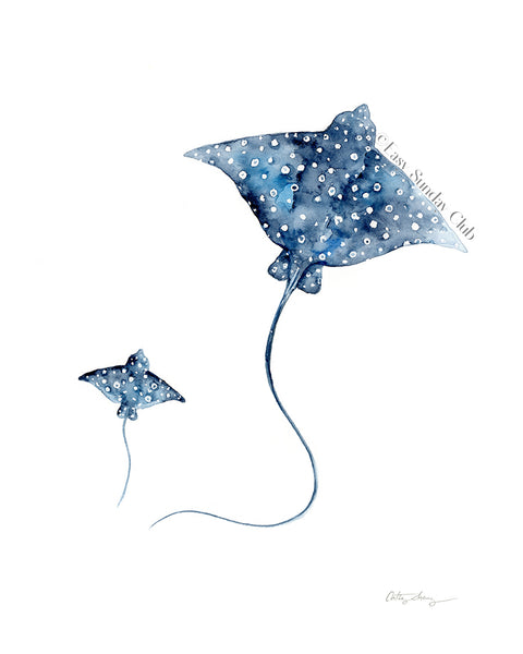 Limited Edition: Spotted Eagle Rays Duo - Fine Art Print | Under the Sea