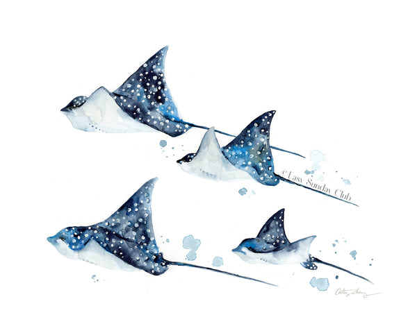 Group of spotted eagle rays | manta rays | stingray watercolor art print