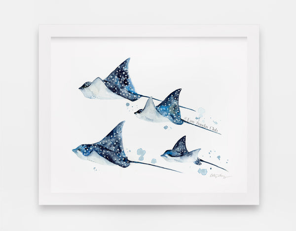 Spotted eagle rays watercolor art print