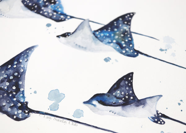 eagle spotted rays watercolor art | manta ray | stingray watercolor