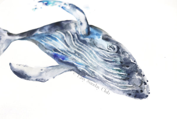 "Humpback Whale ""Gustavo"" - Original Watercolor Painting 