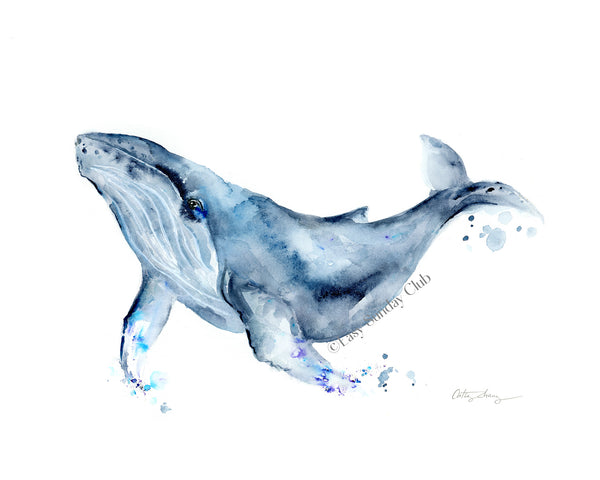 Humpback Whale Watercolor Art Print
