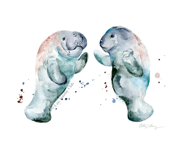 manatees watercolor art | sea cow watercolor