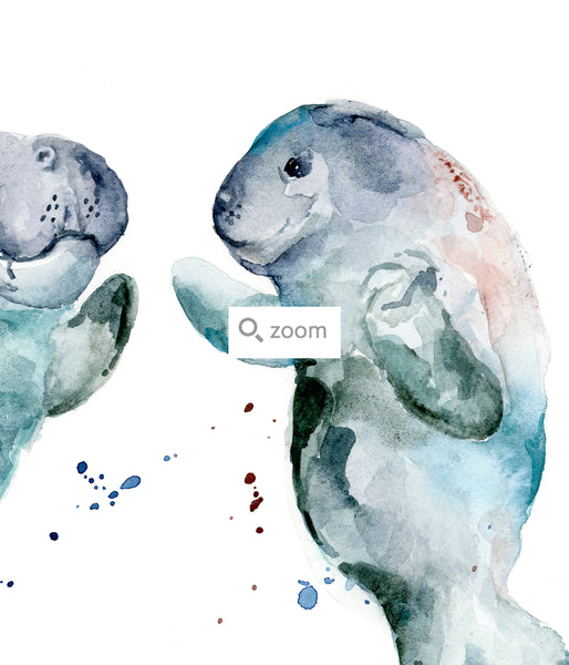manatee watercolor art
