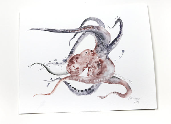 octopus watercolor art | cephalopod | ocean animal art