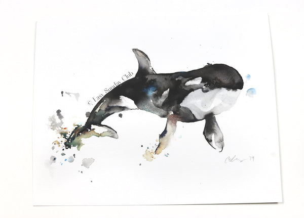 Orca (Killer) Whale Original Watercolor Painting