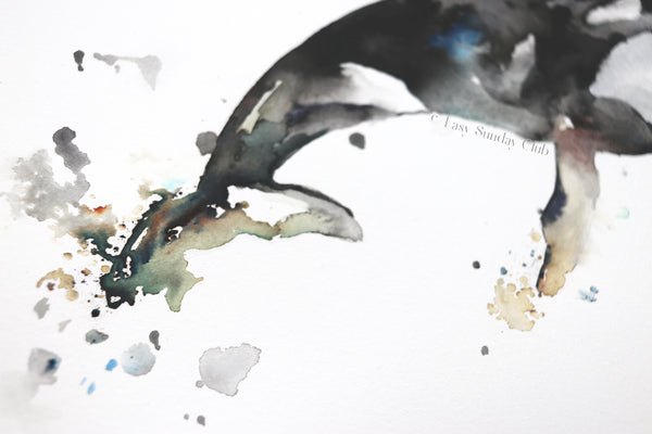 Orca (Killer) Whale Original Watercolor Painting | Under the Sea