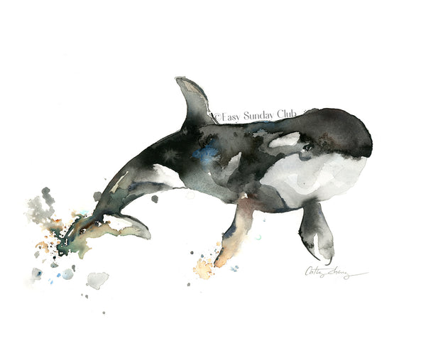 orca whale watercolor art