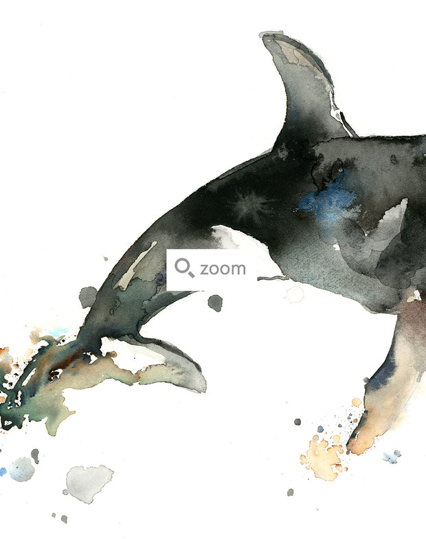 Orca Whale Watercolor Art Print   Under the Sea 1