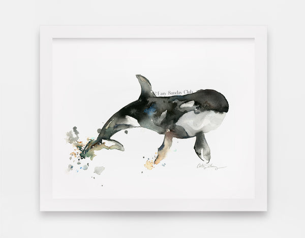 orca whale watercolor | killer whale watercolor art